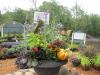 Custom Fall Planters