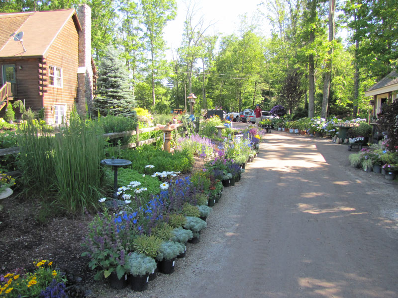garden-center-11