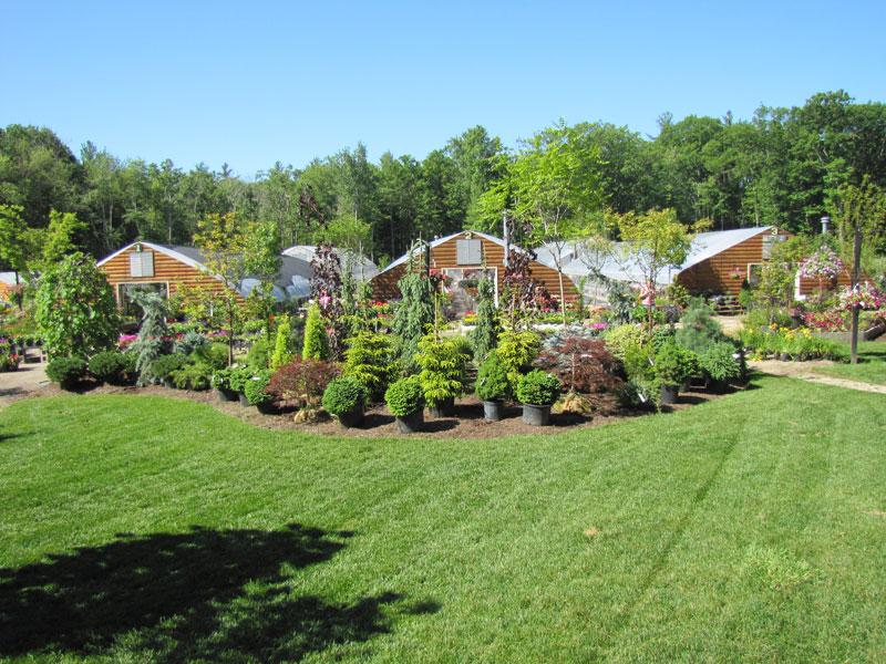 garden-center-18