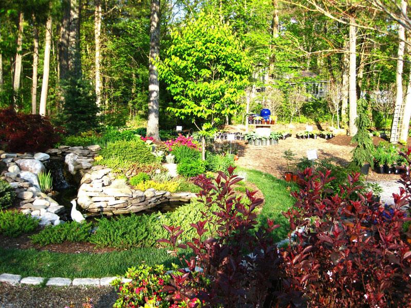 garden-center-4