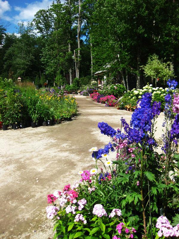 garden-center-5
