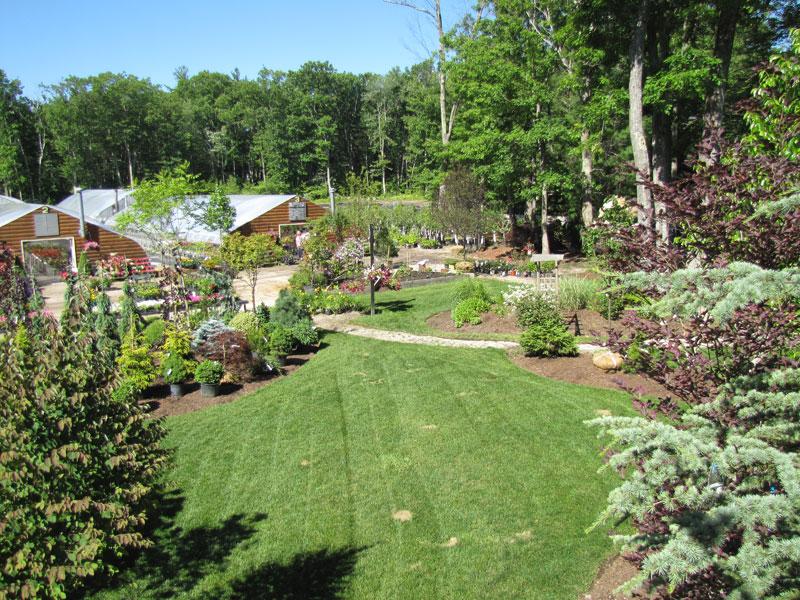 Garden Center Shady Hill Greenhouses