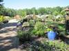 garden-center-10