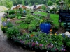 garden-center-6