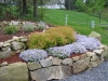 low-stone-wall-with-phlox