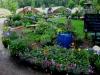 Perennials Walkway